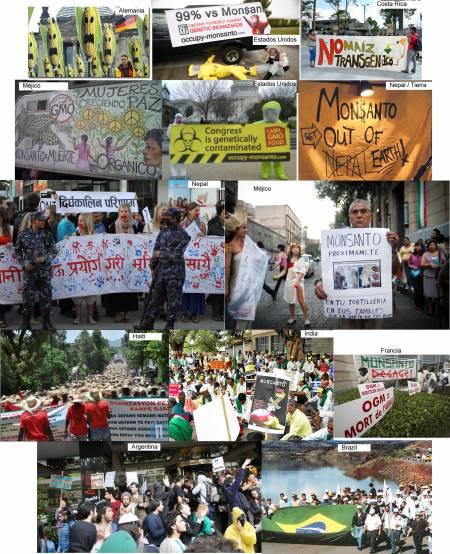 Mundo contra Monsanto